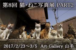第8回 猫・ねこ写真展 PART2