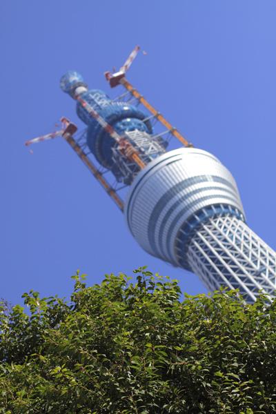 20101227_03