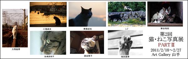 第2回 猫・ねこ写真展