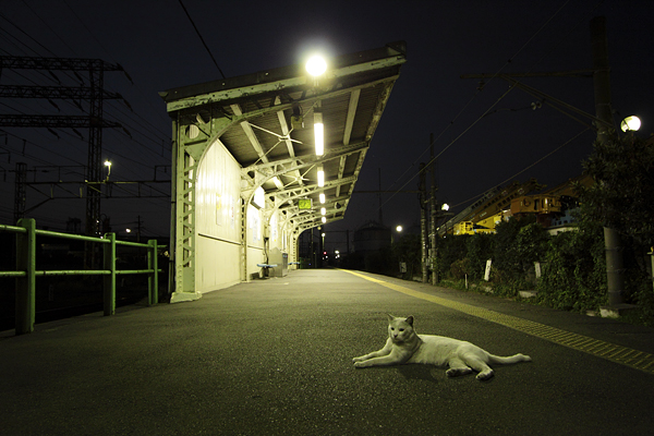 20100907_01