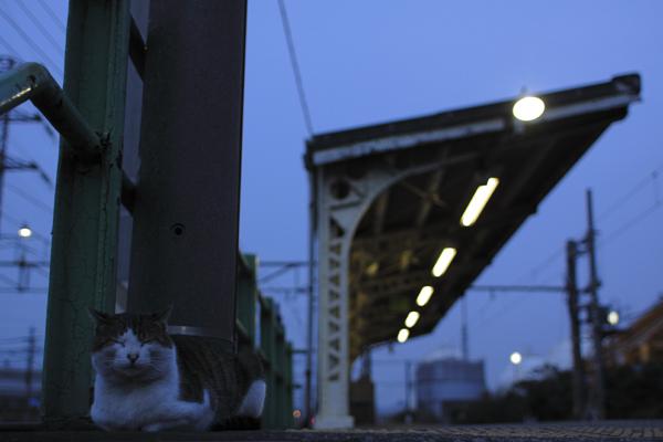 20101119_01