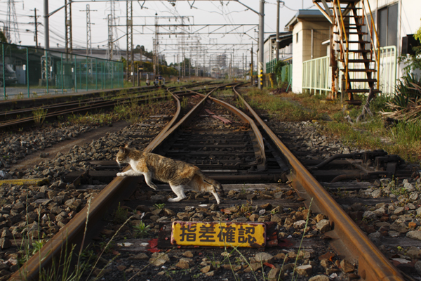 20110505_01