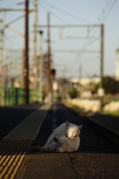 20111023_01